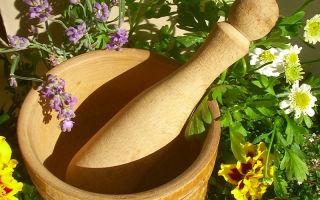 О лечении травами желудка