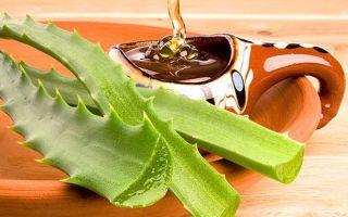 Алоэ с медом: позитивное воздействие на желудок