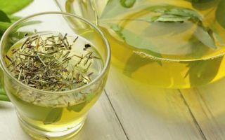 Польза и вред зеленого чая при гастрите