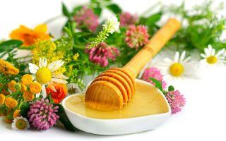 Самые эффективные рецепты для лечения гастрита народными средствами