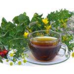 Секреты применения трав для лечения кишечника и желудка
