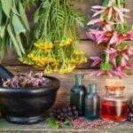 Травы, снижающие кислотность желудка