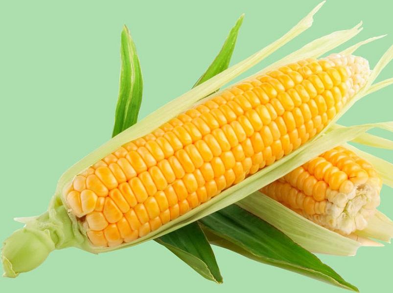 Кукуруза при гастрите